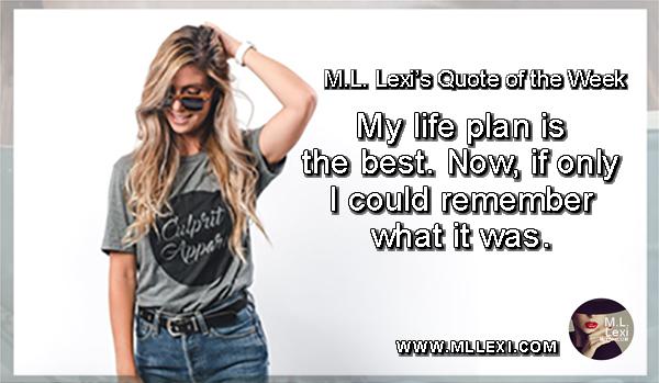 53My life plan