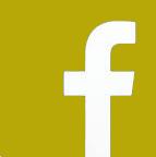 icon facebook1