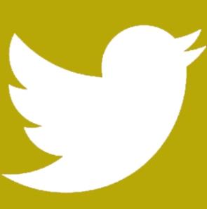 icon twitter1